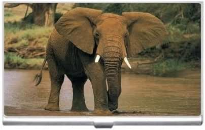 New This Is My Water Hole Dude Big Elephant Business Credit Card Holder Case
