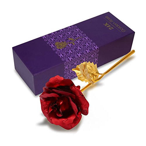 Baynne 24k Gold Foil Plated Rose Flower in Box, Best Romantic Gift for Anniversary,Thanks Giving Day,Valentine's Day,Mother's Day,Birthday Gift