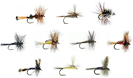 Fly Fishing Assortment Two Dozen Dry Flies in 6 TROUT CRUSHING PATTERNS