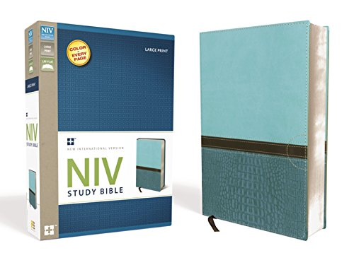 NIV Study Bible, Large Print, Imitation Leather, Blue/Turquoise, Red