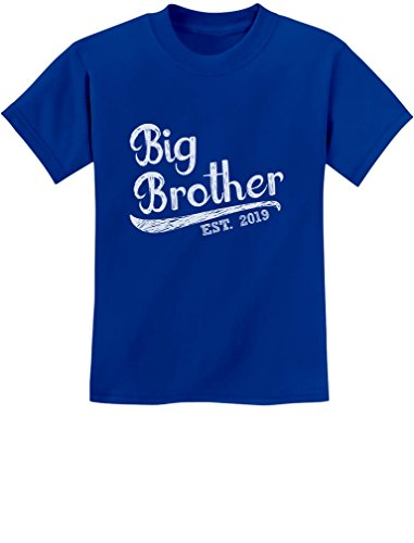 Brother Kids T-shirt - Tstars - Gift for Big Brother 2019 Siblings Gift Youth Kids T-Shirt Large Blue