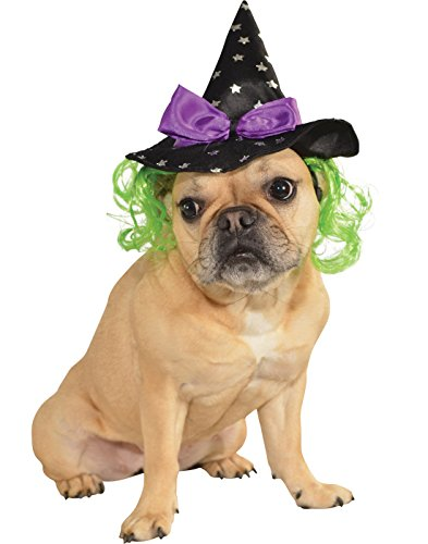 Rubie's Star Witch Hat with Hair Pet