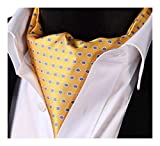 SetSense Men's Floral Jacquard Woven Self Cravat Tie Ascot One Size Yellow / Blue
