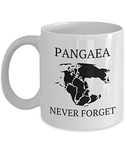 Pangaea Holder - Feddiy Funny Coffee Mug Personalized Mugs 11 Ounces Print Mug Friend Birthday family Gift-Pangaea, Never Forget