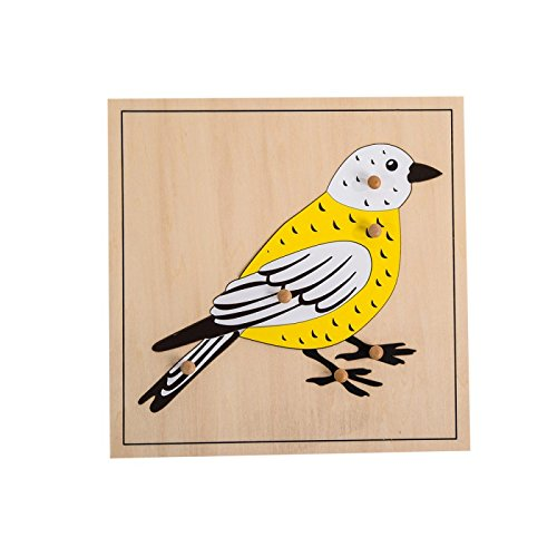 Montessori Nature Materials Bird Puzzle for Early Preschool Learning Toy ...