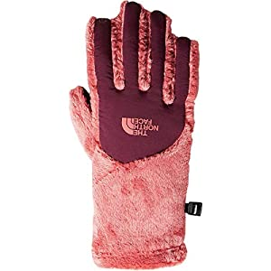 The North Face Women's Osito Etip Glove