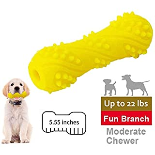 EETOYS Dog Squeaky Toys for Moderate Chewers Puppy Chew Toys for Large Breed Dogs Puppy Teething Durable Dog Toy Made W/Non-Toxic TPE Rubber (Small up to 22 lb)