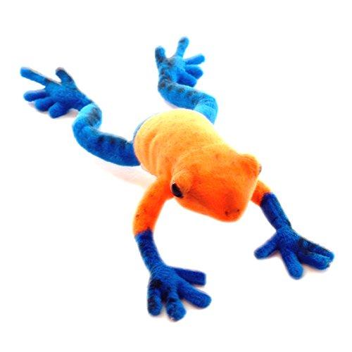 Orange Tree Frog - Hansa Blue Dart Tree Frog 7