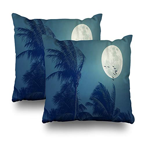 LALILO Set of 2 Throw Pillow Covers, Tropical Night Full Moon Palm Leaf Birds Space Nature Double-Sided Pattern for Sofa Cushion Cover Couch Decoration Home Gift Bed Pillowcase 18x18 inch ()