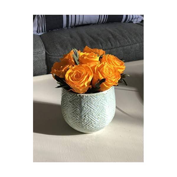 Orange Lavish Everlasting Preserved Rose Arrangement for Valentine's Day and Mother's Day