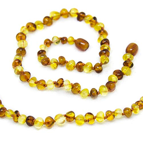 The Art of Cure Baltic Amber...