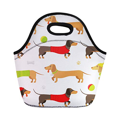 Semtomn Lunch Tote Bag Flat Pattern of Brown and Ginger Dachshunds Wearing Playing Reusable Neoprene Insulated Thermal Outdoor Picnic Lunchbox for Men Women