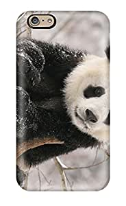 Shannon Galan's Shop Snap On Hard Case Cover Panda Bears Protector For Iphone 6 5297276K26792710