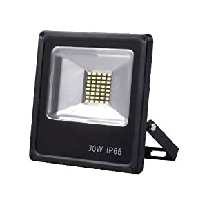 Proyector Led 30W - IP66