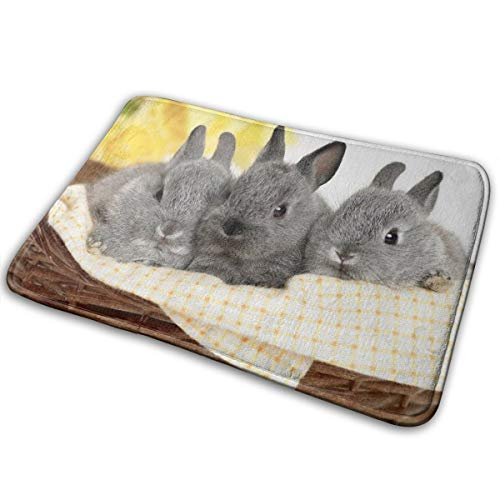 - Jingclor Welcome Doormat, Entrance Floor Mat Rug Indoor Outdoor Front Door Mat with Non-Slip Rubber Backing, Printing Doormats with Rabbits, 15.8''WX23.6''L