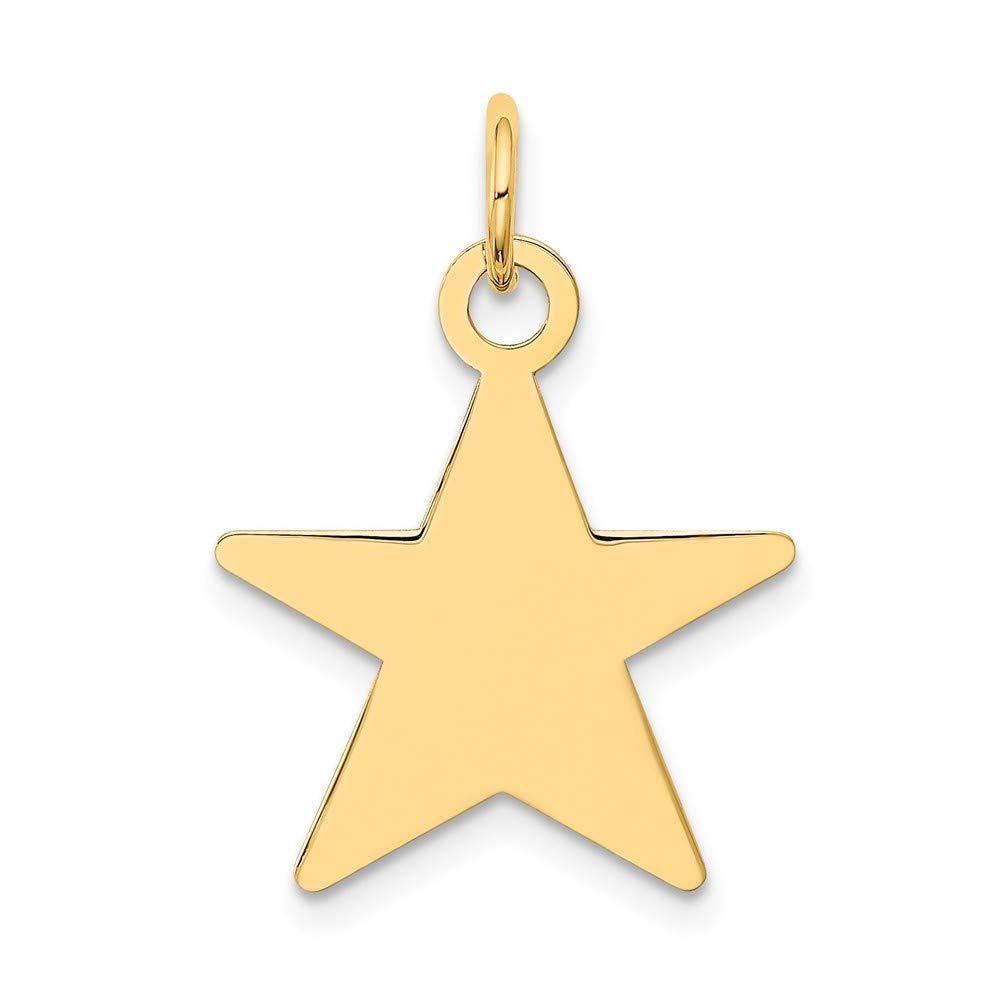 14k Yellow Gold Star Disc Charm