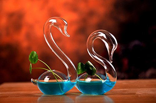 NewDreamWorld's Hand Blown Glass Swan Clear Bud Vase or Plant Clippings for Wedding Centerpieces, Home Decorations, One Pair
