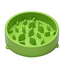 CROMI Slow Feed Pet Bowl, Prevent Gluttony Obesity Interactive Bloat Stop Dogs Bowl (Green)