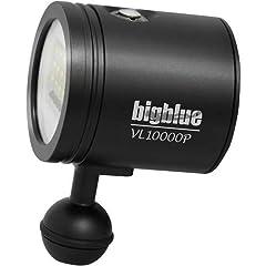Light head only. See full description under VL10000P. Fits TL4000P, TL4500P, TL4800P, VTL6000P, VTL5000P, VL8300P.