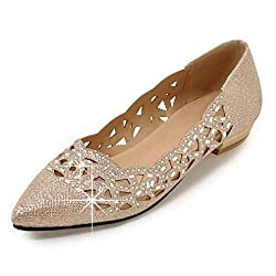 Women Sparkly Rhinestone Pointed Toe Ballerina Shoes