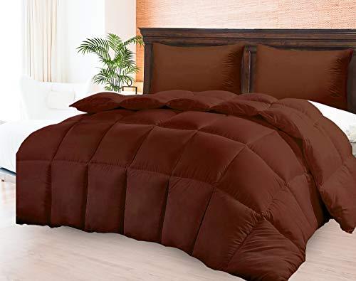 Comforter Duvet Insert - Warm, Fluffy Lightweight & Breathable Queen Size Down Alternative Set - Hotel Quality Bedding- Dust & Spore - Resistant Fibers Ideal for Allergies - Queen Comforter for Summer