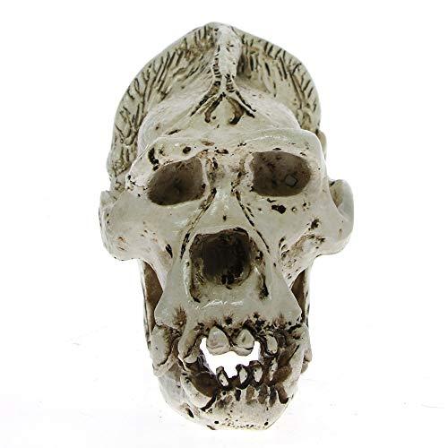 The Geeky Days Orangutan Skull Head Bone Halloween Party Skeleton Figurine Gifts Home Statue Decor -