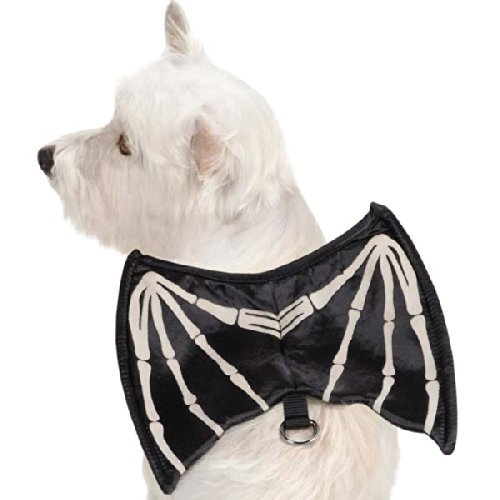 [Zack & Zoey Skeleton Glow-Wing Harness Costume for Dogs, X-Small] (Bat Wings Dog Costume)