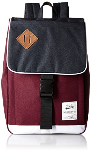 anello poly backpack daypack S size [with the original eco-bag] AU-A0133 F by Anello