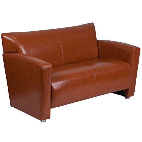 BSD National Supplies Chantilly Contemporary Cognac Leather Loveseat by BSD National Supplies