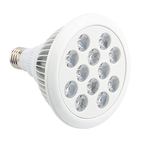660Nm Led Light Bulbs - 8
