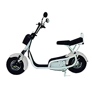ELECTRIC SCOOTERS 800W 30MPH E BIKE ELECTRIC MOTORCYCLE AMW