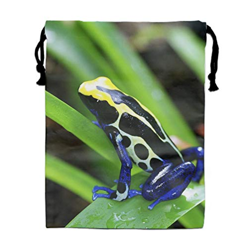 (Drawstring Bag Animal Poison Dart Frogs Folding Sport Backpacks Home Travel Storage Use)