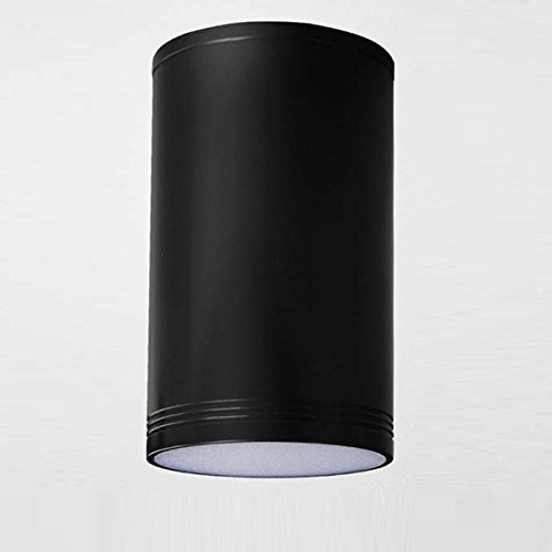 Twist Mini 7w (MASO HOME MS-61785 The Mini Size TUBE LED Ceiling Downlight Flush-Mount Ceiling Lamp Corridor Hallway Light (Black 7W Warm-Light))