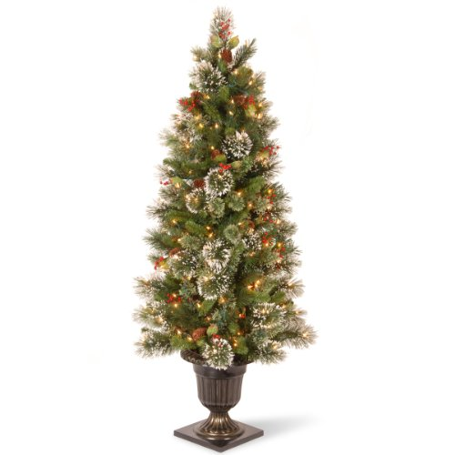 National Tree 5 Foot Wintry Pine Entrance Tree with Cones, Red Berries, Snowflakes and 100 Clear Lights, (WP1-302-50) (Optic Target Fiber Christmas Tree)