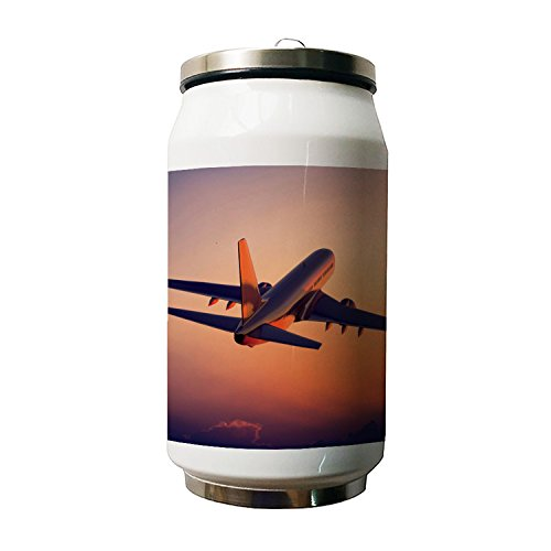 Kdnsgfds Air Plane Double Vacuum Insulated Stainless Steel Coke Cans Water Bottle,280ml