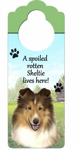 """Sheltie Wood Sign """"A Spoiled Rotten Sheltie Lives Here""""with Artistic Photograph Measuring 10 by 4 Inches Can Be Hung On Doorknobs Or Anywhere In Home"""