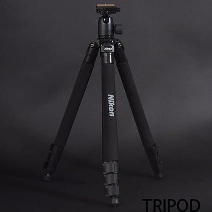 Amazon com : NEW Genuine Nikon DSLR SLR Digital Camera