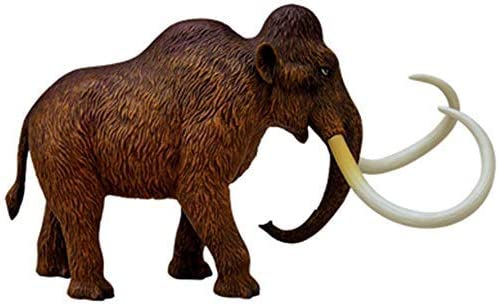 Education Template Mammoth Visual 4D Organ Model Detachable Assembly Model Teaching Model Gift Exquis