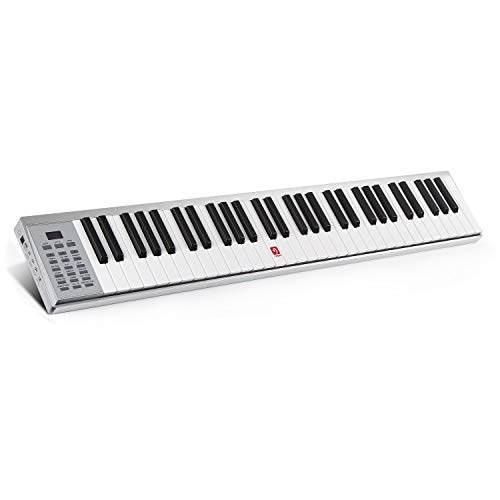 (Piano Keyboard, 61 Key Electronic Keyboard with Touch-response Keys, Lightweight, USB or Adapter Power Supply, Aluminum Shell, Silver)