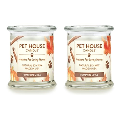 One Fur All - 100% Natural Soy Wax Candle - Pet Odor Eliminator, Up to 60 Hours Burn Time, Non-Toxic, Eco-Friendly Reusable Glass Jar Scented Candles – Pumpkin Spice - Pack of 2 - Candle Glass Pumpkin Spice
