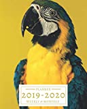 2019-2020: 16-Month Weekly and Monthly Planner/Calendar Sept 2019-Dec 2020 Colorful Parrot
