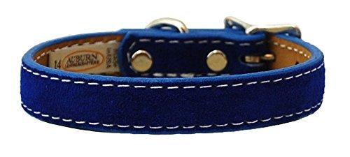 Auburn Leathercrafters Saratoga Suede Dog Collar 1x18 bluee