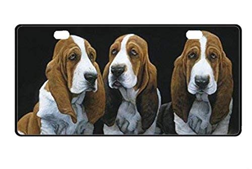 Basset Hound Front License Plate Decorative Funny Novelty License Plate Frame Cover Vanity Tag Unique Gifts for Men Women