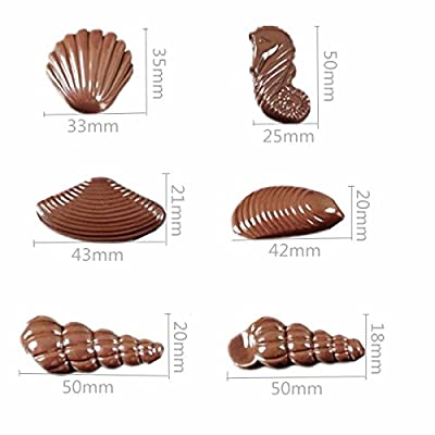 Jeteven Hippocampus Sea Shell Clear Polycarbonate Chocolate Mold Jelly Candy Making Mold 20-Piece Tray