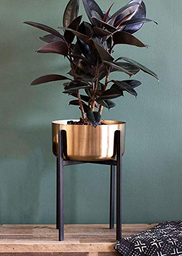Dash Metal Plant Stand with Gold Flower Pot - 11.75
