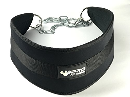 Premium Heavy Duty Chain Dip Belt by PRO Fit Active, Workout Weight Adding Lifting Pull Up Dipping Belt With Long Chain 36'' , Comfortable Workout Fit With Bag