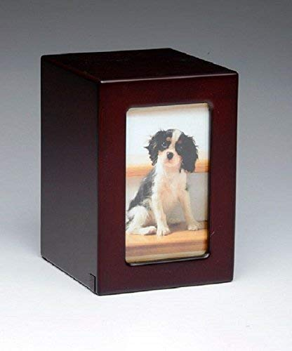 Pet Urn Peaceful Pet Memorial Keepsake Urn,Photo Box Pet Cremation Urn,Dog Urn,Cat Urn ,Small Animal Urn, Size,Medium, Color,Cherry, 40 cu.in