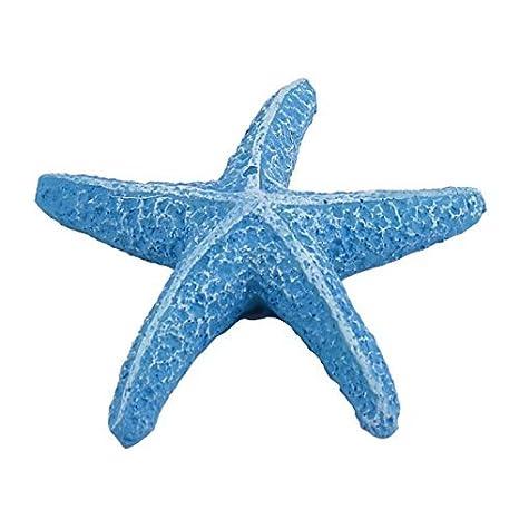 DealMux Partido pecera acuario Resina dedo lápiz estrellas de mar decoración azul del ornamento: Amazon.es: Productos para mascotas