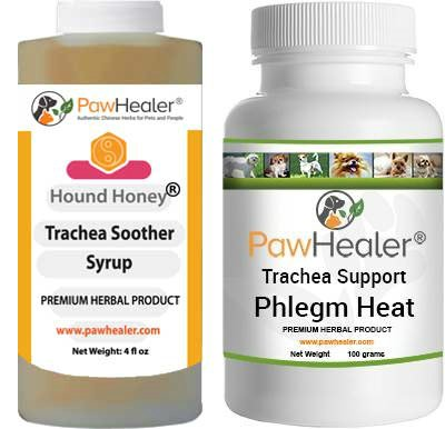 - Trachea Soother Syrup Bundle with Trachea Support: Phlegm Heat - Natural Herbal Remedy for Symptoms of Collapsed Trachea for Dogs - Combo of (1 Bottle) 5 fl oz Syrup & (1 Bottle) 100 Grams Powder...