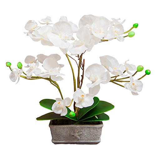 Binfen Artificial Silk Phalaenopsis Flower with Decorative Ceramic Square Vase Vivid Potted Orchid Plant Indoor or Outdoor Wedding Party Home Centerpiece Décor, White
